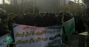 تجمع کارگزاران صندوق بیمه کشاورزی از سراسر کشور در تهران