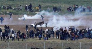 کشته شدن ۱۷ فلسطینی در مرز اسرائیل و غزه و اعلام عزای عمومی