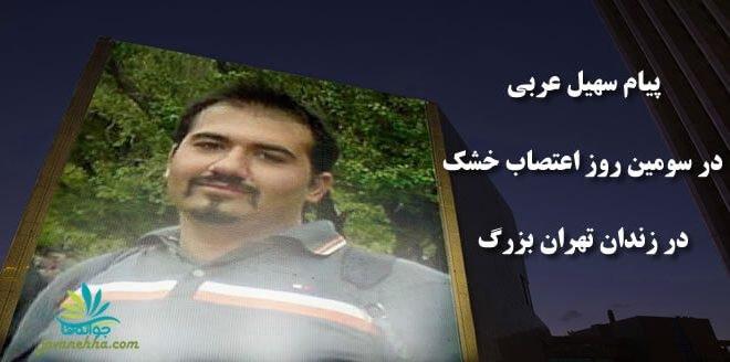 درخواست حمایت سهیل عربی از مردم برای پهن کردن سفره های هفت سین مقابل زندانها