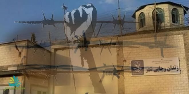 گزارشی از یک فاجعه هولناک و طراحی شده در زندان رجایی شهر کرج