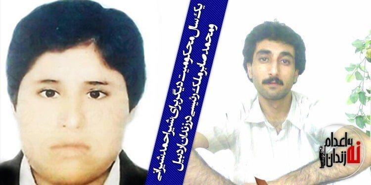 یک سال محکومیت دیگر برای شیراحمد شیرانی و محمدصابر ملک رئیسی